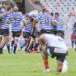 Western Province celebrate against the Cheetahs