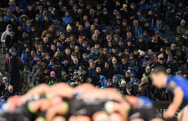Leinster fans RDS Arena spectators trial