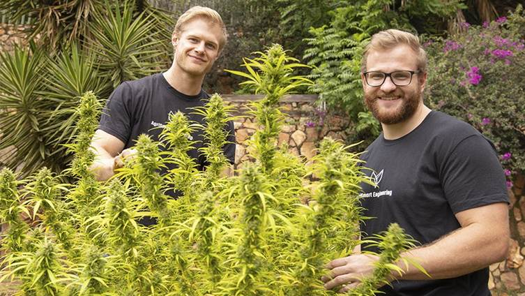 Constant Beckerling Wits cultivation Q&A