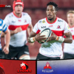 Lions hold on to deny plucky Province
