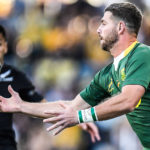 Willie le Roux losses the ball against the All Blacks